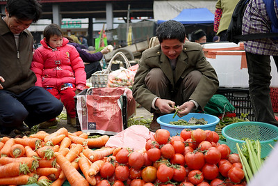 Sorting through the fresh veggies for the perfectly ripe and ready ones, Fuli market, China.