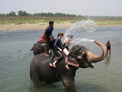 Elephant Bath Splash