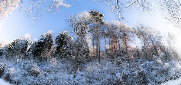 Fisheye Winter