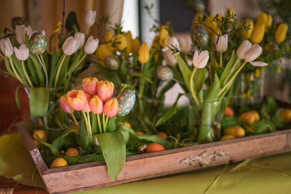 spring | printemps | Frühling