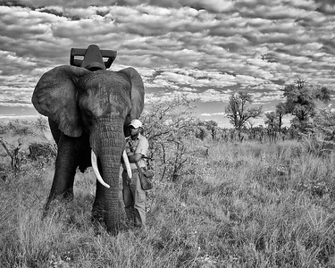 "Elephant and handler, Botswana. Winner of Google internal weekly photo contest theme ""Black & White""."