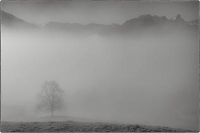 At the fog boundary