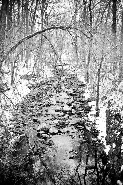 Snowy Rock Creek Park - Washington DC