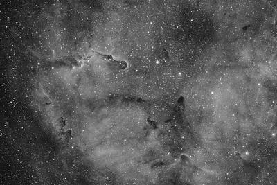 IC1396 | The Elephant's Trunk nebula