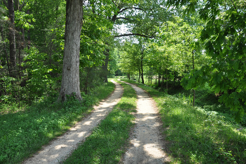 Farm Path - Starr Maryland