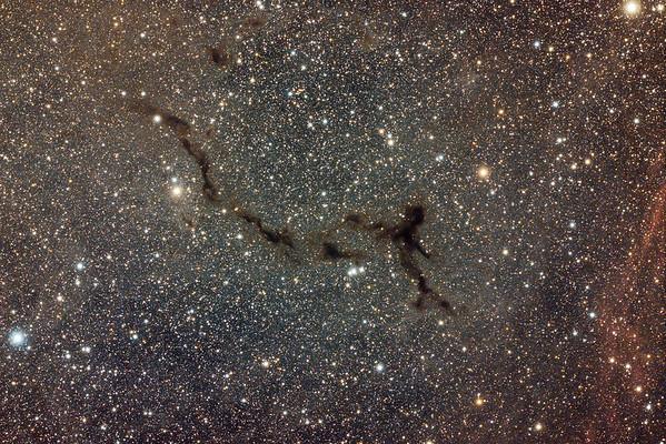 Barnard150   The Seahorse nebula