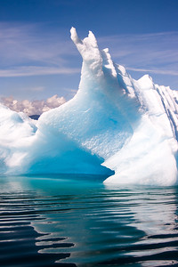 Ice berg in Tracy arm