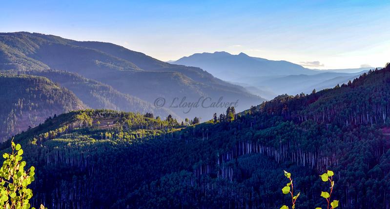Hillside Morning Light