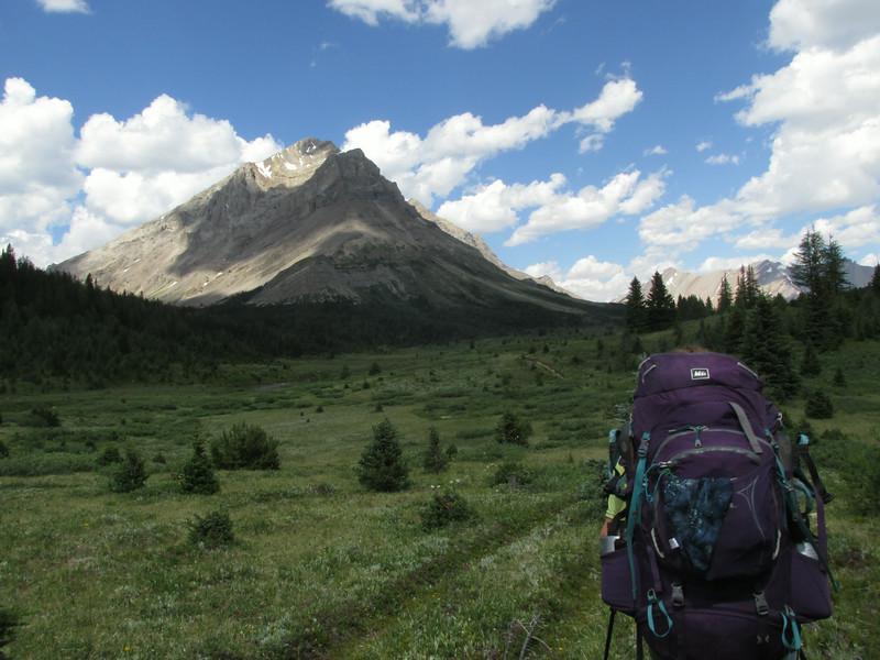 Wild Rockies Summer Semester, 2014