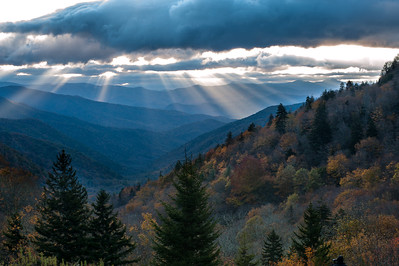 Fall Rays