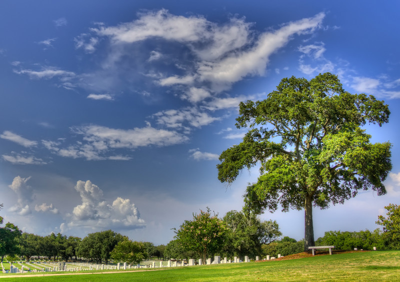 This is a Charity Print - All Proceeds above materials for any prints sold of digital licenses sold of this image will go to The Wounded Warrior Project as a donation in your name.<br /> <br /> <br /> Barrancas National Cemetery is located within the boundaries of the U.S. Naval Air Station, eight miles southwest of downtown Pensacola, Fla. The Pensacola Naval Air Station is home to the U.S. Naval Air Training Command and encompasses almost 12,000 acres. It was established in 1914 on the site of the old U.S. Navy Yard at Pensacola. A small cemetery had been maintained here in conjunction with the Marine Hospital that was located near Fort Barrancas. In 1838, the cemetery was expanded and established as a naval cemetery. During the Civil War years, many casualties were interred in gravesites initially set aside for personnel on duty at the Navy Yard.<br /> <br /> Following the election of President Abraham Lincoln in 1861, Florida seceded from the Union despite its entry only 16 years before. As it provided the best harbor along the Gulf of Mexico, possession of Pensacola Bay was a key mission for both the Union and Confederate forces. The Army guarded the entrance to Pensacola Bay with three fortifications: Fort McRae and Fort Barrancas on the land side, and Fort Pickens at the western tip of Santa Rosa Island. Army Lieutenant Adam J. Slemmer, commander of the 1st U.S. Artillery at Fort Barrancas, realized that if war proved inevitable and Southern forces attacked, his small force of 51 men could not possibly defend all four garrisons. On Jan. 10, 1861, the same day Florida seceded from the Union, Slemmer spiked the guns at Fort Barrancas, blew up ammunition at Fort McRae and concentrated all his troops at Fort Pickens, which he believed was the key to the defense of Pensacola Harbor. Two days later, Slemmer's men watched as Southern soldiers moved into the other forts across the channel. When, on Jan. 15, soldiers from Florida and Alabama demanded the surrender of Fort Pickens, Lieutenant Slemmer refused. Within days the two sides reached a truce in which the South agreed not to attack Fort Pickens and the North would not reinforce the fort.<br /> <br /> By the time Lincoln took office in March, both Fort Sumter in the harbor of Charleston, S.C., and Fort Pickens needed supplies. Lincoln had pledged to continue federal occupation of both forts. If he withdrew the garrisons it would mean he recognized the legitimacy of the Confederacy; if he supplied the forts he risked war. The Union eventually did send ships from Fort Monroe but, under the terms of the truce, they dared not land. For 10 weeks, the Union ships waited, while inside the fort Slemmer and his men prepared for the inevitable strike. After ten weeks without an attack, Slemmer and his men learned of the firing on Fort Sumter and the beginning of the Civil War.<br /> <br /> On the mainland, the Navy Yard was surrendered intact to Confederate forces on April 12, 1861, but Fort Pickens remained under control of the Union forces throughout the Civil War. For the next year, Confederate and Union forces engaged in a number of skirmishes. In May 1862, Confederate forces abandoned the Navy yard, Fort Barrancas, and Fort McRae. The continuing presence of a strong federal force at Fort Pickens no doubt was a significant factor in the Confederate decision to abandon the Pensacola Bay area.<br /> <br /> Many Union and Confederate dead were interred in the Barrancas cemetery. As the war continued, the remains of other casualties were brought here for burial. By agreement between the Secretary of the Navy and the Secretary of War, on Jan. 30, 1868, the cemetery was transferred to the War Department to become Barrancas National Cemetery.<br /> <br /> In 1869, Gen. Lorenzo Thomas, inspector of national cemeteries, reported that about 1,310 burials had been made in the cemetery. In addition to the troops stationed at Forts Barrancas and Pickens, remains had been reinterred here from the surrounding area, including Santa Rosa Island and Apalachicola in Franklin County. This total included the remains of 673 unknown Union soldiers.<br /> <br /> In 1944, 1950, 1986, and 1990 additional acreage was transferred from the Naval Air Station to expand the cemetery.