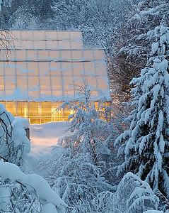 Gartneri om vinteren Reistad, Lier 5.1.2003