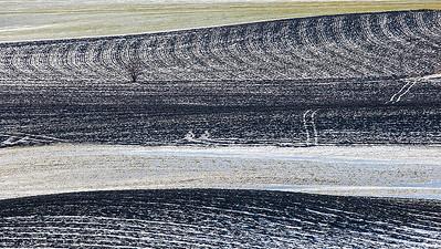 Bergsvingen, Øvre Eiker 22.2.2015 Canon 5D Mark II + Tamron 150 - 600 mm 5,0 - 6,3 @ 375 mm