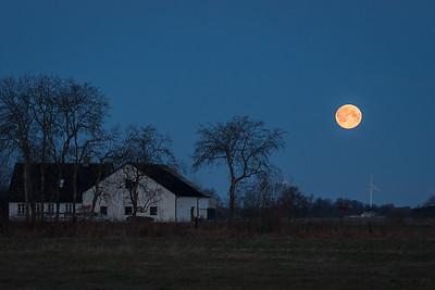 Fullmåne / Full moon Hou, Danmark 23.3.2016 Canon 7D Mark II + Tamron 150 - 600 mm 5,0 - 6,3