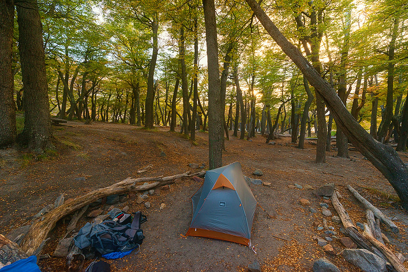 My Campsite in the Morning Autumn Light - Parque Nacional Los Glaciares, Argentina