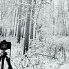 Shooting the Last Frontier - November 2014, Alaska