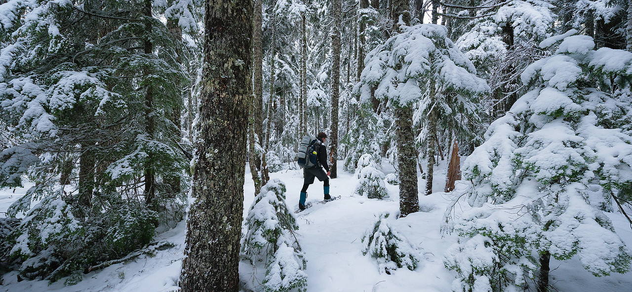 My Brother Lee, Snowshoeing at Mount Rainier National Park - January 2016