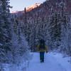 Hiking at Twilight in Denali National Park, Alaska