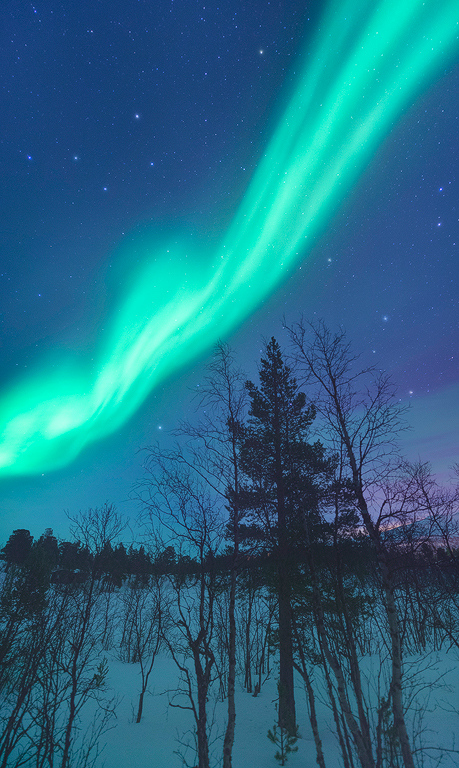 Night Mystic - Abisko, Sweden