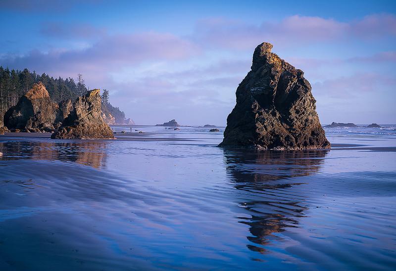Rock Bottom - Ruby Beach Washington