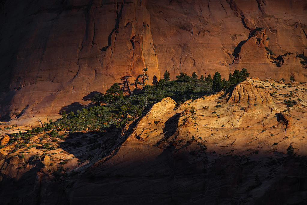 Early Morning in the Hop Valley - Zion, Utah