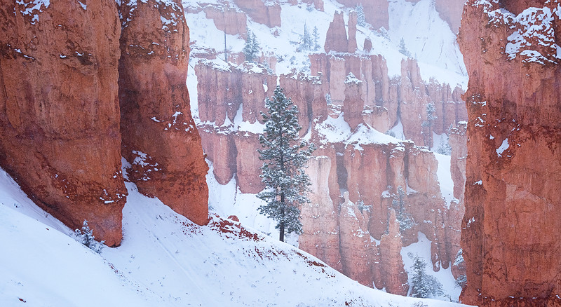 Visions of the Southwest - Bryce Canyon National Park, Utah