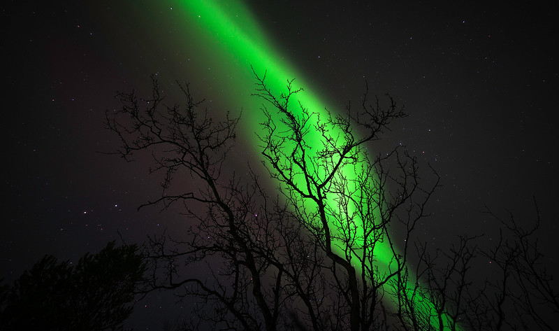 The Northern Lights Near Abisko Sweden