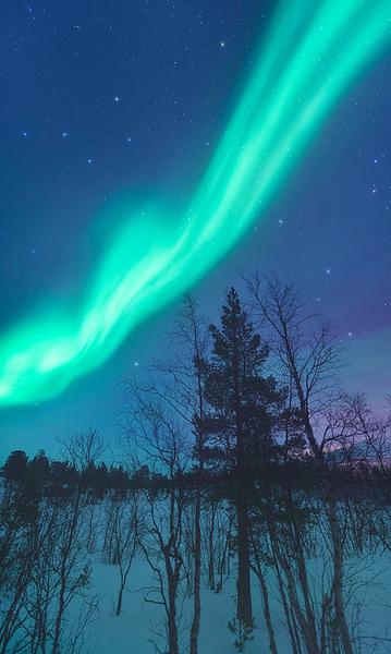 Night Mystic - Abisko, Sweden
