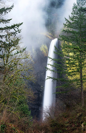 Follow the Leader - Elowah Falls, Oregon