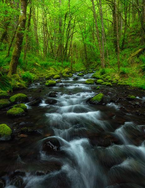 Halfway There - Gorton Creek, Oregon