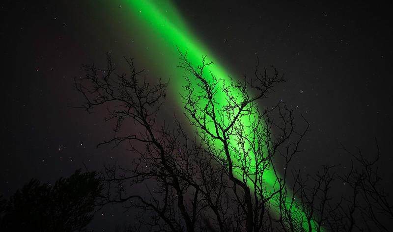 The Northern Lights Near Abisko Sweden