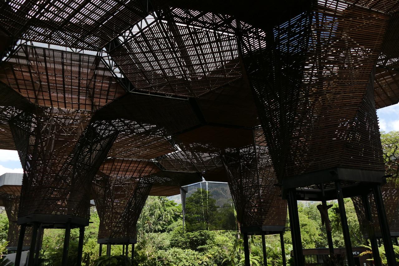 Shade covering in Jardin Botanico, Medellin, Colombia