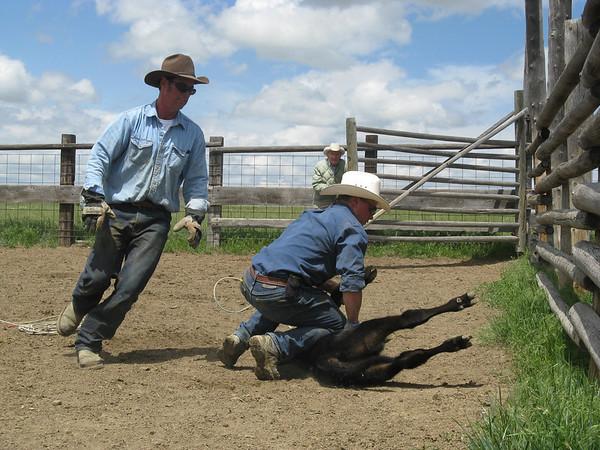 Best of Ranch