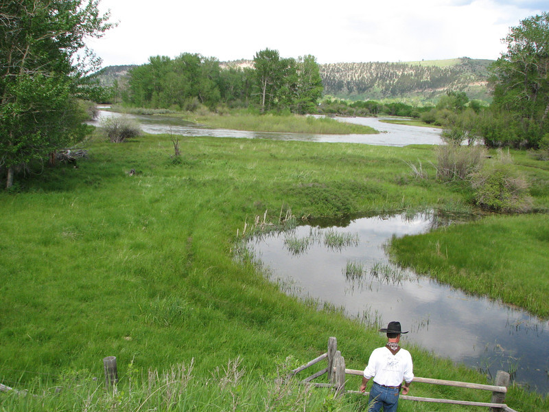 Montana 252