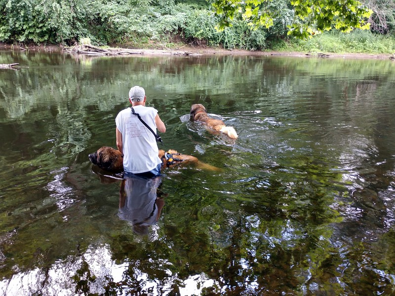 Dad helped me to get in and out of the river, but most of the time we just stood there and enjoyed everything it had to offer.