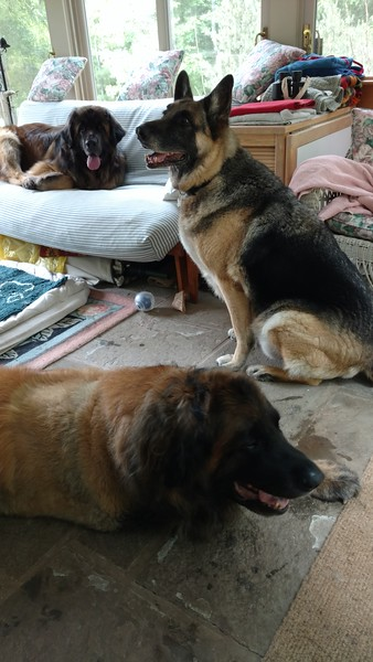 """I can't believe my old buddy came to visit me today.  Riggins has always been like a brother to me.  Maybe that's why Yulee calls him """"Uncle Riggins"""""""
