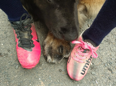 """I wondered how my """"Super Paw"""" would look in pink..."""