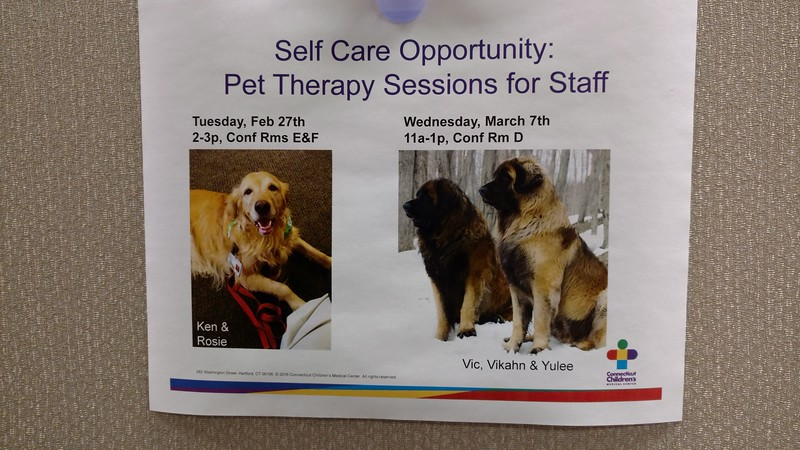 We unfortunately had to cancel our therapy appointment with the doctors and nurses.