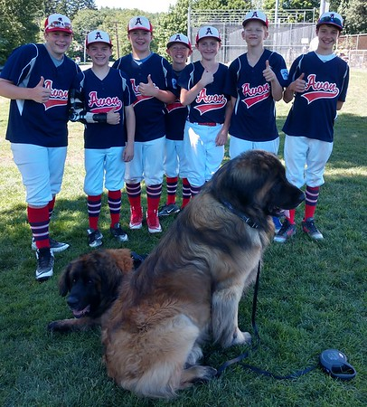 The little league team appreciated the support we gave them.