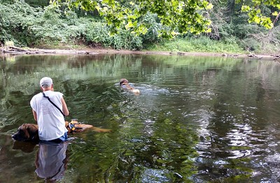 Yulee decided to look for fish while dad and I were hanging out in the refreshing current.