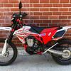 Beta 520RS -  (1)