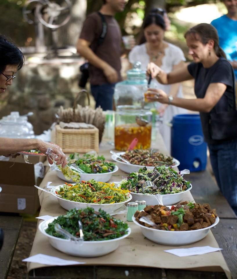 Salad buffet at Toben and Gayle's wedding picnic