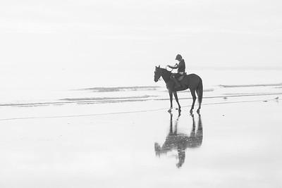 Reflections-IMG_3614