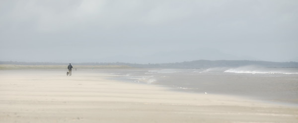 Bettystown14March2019-1L8A4884