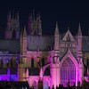 Minster, pancreatic cancer awareness purple