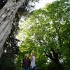 engaged couple dwarfed by the majestic trees at westonbirt