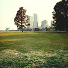 Tree and Museums of Art in the Distance : Milwaukee Cityscape Medium Format Color Film