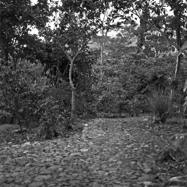 Mountains of Chiapas Mexico 18