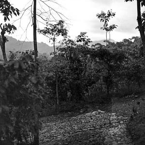 Mountains of Chiapas Mexico 7