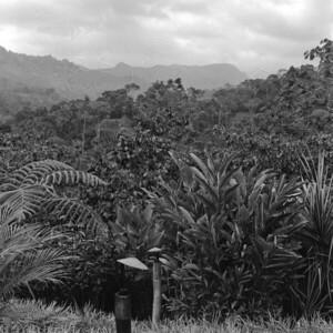 Mountains of Chiapas Mexico 10